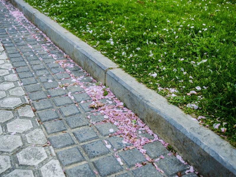 Urejanje in asfaltiranje dvorišč Manas asfalti d.o.o.