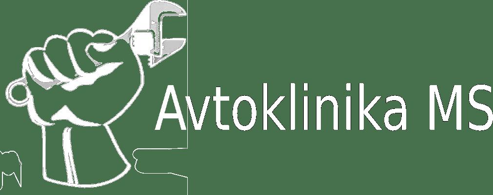 Servis in vzdrževanje vozil, AVTOKLINIKA MS