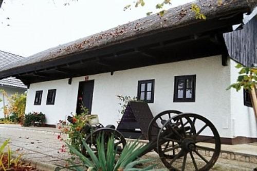 Prenočišča - turistična kmetija, VILA ISTENIČ
